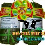 Khô Nhái Đồng - Vũ Nữ Chân Dài An Giang - Campuchia
